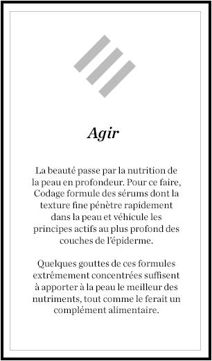codage11-qgir